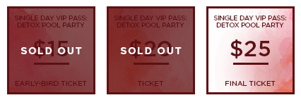 HHB 2017 Ticket Detox SingleDayVIP SO
